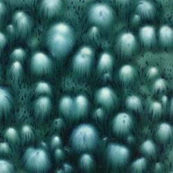 MAYCO JUNGLE GEMS BLOOMIN'' BLUE 118ML