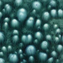MAYCO JUNGLE GEMS BLOOMIN'' BLUE 473ML